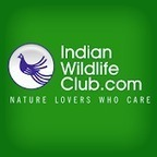 IndianWildlifeClub.com - Android Apps on Google Play | Wilderness Conservation | Scoop.it