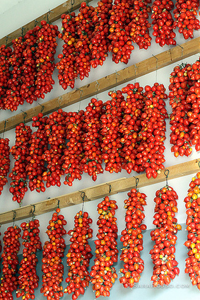 Canning Tomatoes in Italy and a Homemade Pasta Sauce Recipe | Pane, Pizza e Amore | Scoop.it