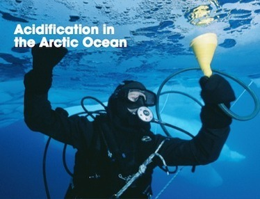 Scientists Warn of Emerging Impacts from Arctic Ocean Acidification   EcoWatch   Scoop.it