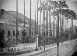 A história da Casa Daros, por Milton Teixeira - Jornal Rio Carioca | Turismo e Educação | Scoop.it