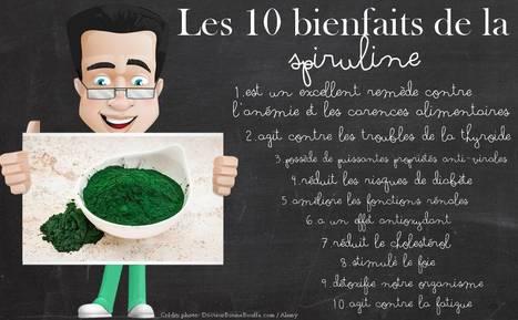 La Spiruline l'aliment parfait - Jean-Marc FRAICHE | alternative-sante | Scoop.it