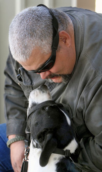 Paws and Stripes trains dogs to help veterans | Veterans and Military Families News | Scoop.it