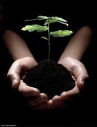 La satisfaction | Développement personnel & bouddhisme | Scoop.it