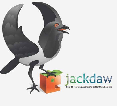 Jackdaw | cwxcw | Scoop.it