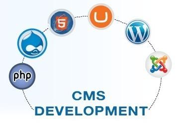 The Rise of CMS Development   Website Application Development   Scoop.it