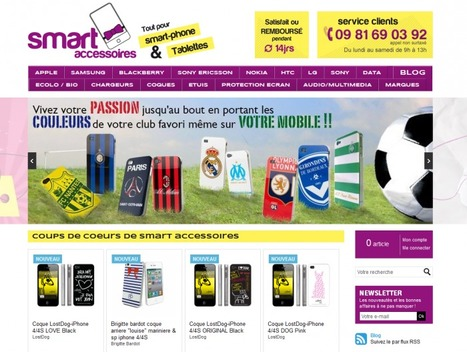 Témoignage de E-Commerçant – David-Alexandre de la Boutique Smartaccessoires | WebZine E-Commerce &  E-Marketing - Alexandre Kuhn | Scoop.it