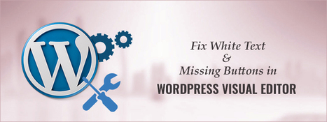 How to Fix White Text and Missing Buttons in WordPress Visual Editor | Carmatec business solution | Scoop.it