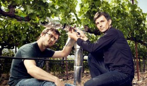 The Vine Nerds: How Data Is Revolutionizing the Art of Winemaking | Gastronomic Expeditions | Scoop.it