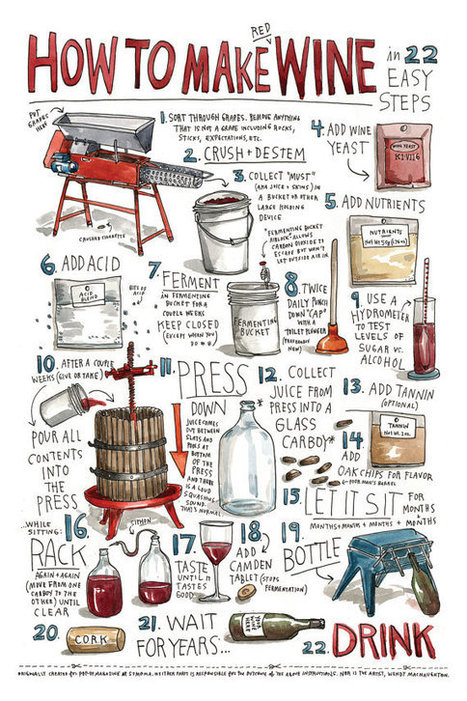 Explore – How to Make Wine – an illustrated guide by the one...   Wine industry   Scoop.it