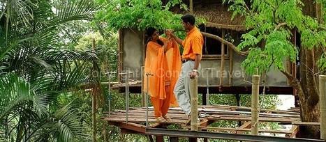 Make Kerala your Perfect Honeymoon Destination | Travel Trip | Scoop.it