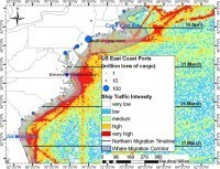 The US East Coast Can Kiss Its Marine LifeGoodbye | The Wild Planet | Scoop.it