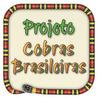 Projeto COBRAS BRASILEIRAS