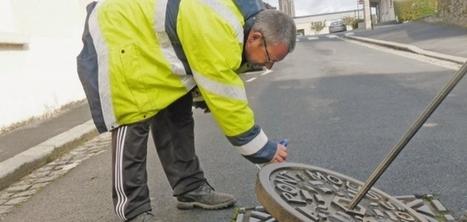 Saint-Lô (50) : Les rats sont encore et toujours là...!!!   Inter Nettoyage Service Bretagne   Scoop.it