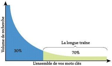 Longue traîne, les mots-clés inattendus - Mesurer la longue traine SEO | DediServices : Solution Web | Scoop.it