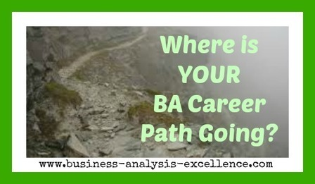 Business Analyst Career Path Options | 7 Great Options | Business Analysis | Scoop.it