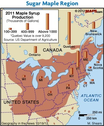 Maple Syrup Time | AP HUMAN GEOGRAPHY DIGITAL  STUDY: MIKE BUSARELLO | Scoop.it
