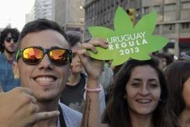 Uruguay becomes first country to legalise marijuana trade | Alcohol & other drug issues in the media | Scoop.it