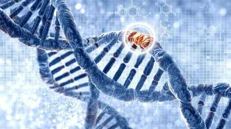 New company plans to revolutionize genomic medicine with deep learning | Longevity science | Scoop.it