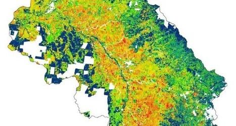 Precision Maps | Precision Agriculture | Imagem Agronegócio | Scoop.it