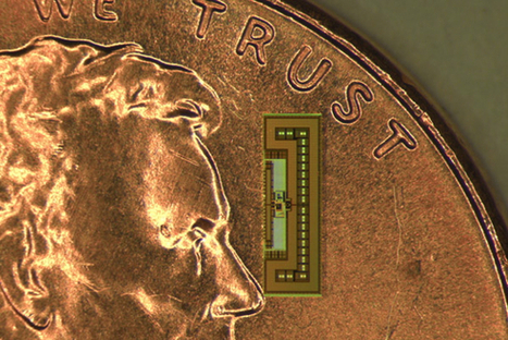 Battery-Free Chip For the 'Internet of Things' That's the Size of an Ant   Innovation   Scoop.it