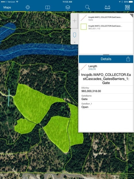 How mobile tech is helping environmental advocates preserve forests - GeekWire | Mobile: Recruitment and Applications | Scoop.it