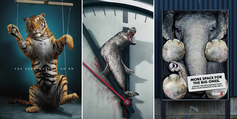 33 Powerful Animal Ad Campaigns That Tell The Uncomfortable Truth | De todo un poco... | Scoop.it