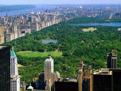 A New York Trip You'll Want To Tell Everyone About   Fun and the Sun   Scoop.it