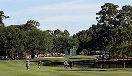 Going the Distance: Par-4 16th at Innisbrook | Golf Channel | Salamander Sentinel: Final Edition | Scoop.it