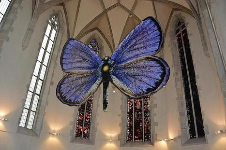 Zurich. Œuvres d'art à effet papillon | Variétés entomologiques | Scoop.it