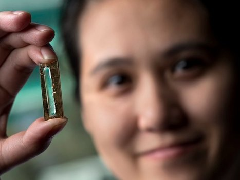 Researchers have stumbled upon a battery breakthrough that could change energy storage forever | Post-Sapiens, les êtres technologiques | Scoop.it