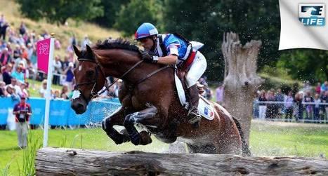 Grand National de CCE à Jardy (92) : Touzaint encore et toujours !   Cheval et sport   Scoop.it