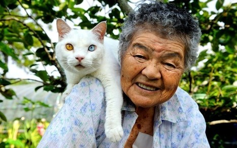 This Grandma & Her Cat Will Melt Your Heart | Favorite think's | Scoop.it