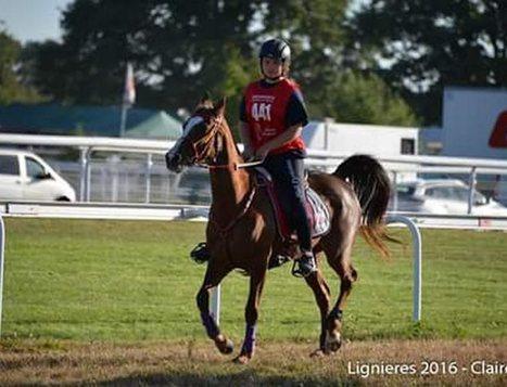 Endurance équestre : une cavalière championne  de France | Cheval et sport | Scoop.it