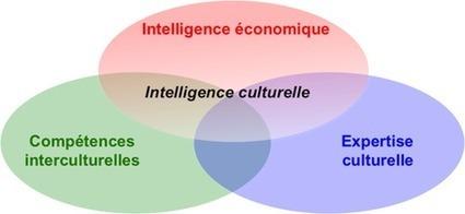 Intelligence culturelle | Management Interculturel & Intercultural Management | Scoop.it
