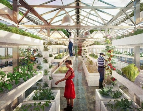 The Urban Farming Technique That Will Revolutionize the Way We Eat | city greening | Scoop.it