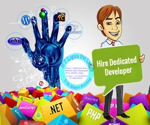 Web Design Chandigarh - Software Development Mohali - SEO Company - htlogics: Hiring .Net Developer | Software Developments Companies | Scoop.it