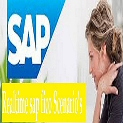 realtime-sap-fico-scenarios-and-Issues | sap fico | Scoop.it