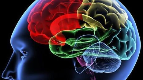 """Brain differences found between Asperger's and autism 