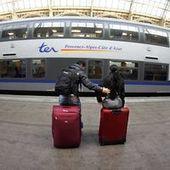 Pour renouveler ses TER, la SNCF commande des rames... trop larges   Règles, normes et comportements absurdes   Scoop.it