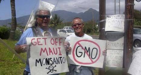 Opposing Local Hawaii Law, Big Agribusiness Confuses GMO Regulations With Same-Sex Marriage Discrimination | Monsanto Sucks | Scoop.it