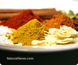 Three popular spices that lower blood sugar levels | zestful living | Scoop.it