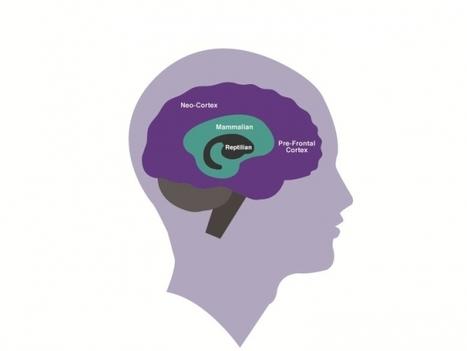 Hijack! How Your Brain Blocks Performance - Forbes | Brain Science | Scoop.it