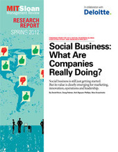 Social Business: What Are Companies Really Doing? - MIT Sloan and Deloitte Study | Business Brainpower with the Human Touch | Scoop.it