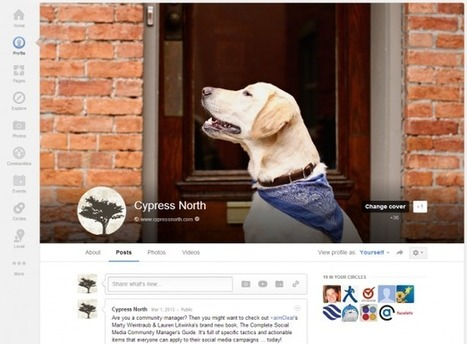 Guide to the New Google Plus Cover Photo Size, Inspiration & Tips   Google   Scoop.it