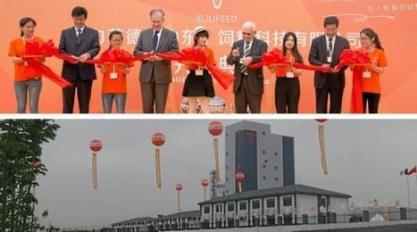 Alimentation du bétail : le Breton Alain Glon ouvre une usine pilote en Chine - Ouest France | Agriculture en Pays de la Loire | Scoop.it