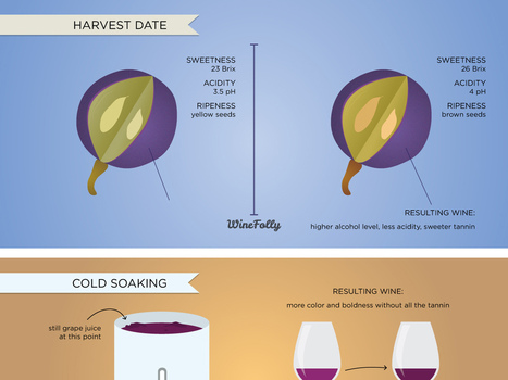 6 Wine Making Processes & How They Affect Wine | #xarxaclau | Scoop.it