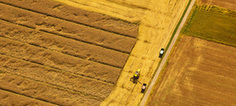 Agrocarburants : les craintes de la Commission européenne confirmées par l'Ifpri et le JRC | Ecologie | Scoop.it