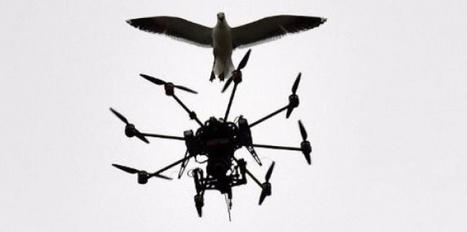 Les drones, nouvel outil des journalistes - Sciences et Avenir | Drôles de drones | Scoop.it