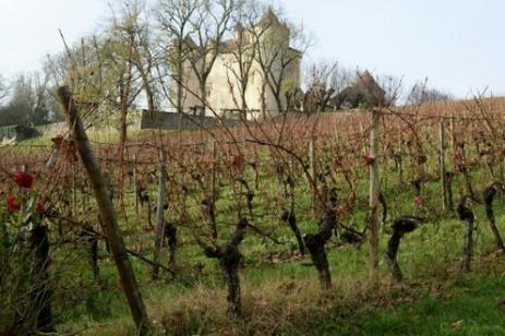 Vin: la ruée vers le cahors | Le vin quotidien | Scoop.it
