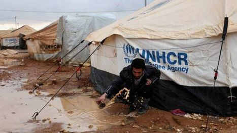 #PROTEST 'World Food Program initiative UN agency food aid vouchers in Syrian crisis diverted and sold for cash'   News You Can Use - NO PINKSLIME   Scoop.it